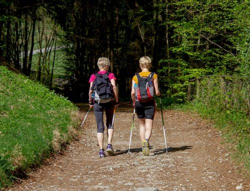 Rosnąca popularność nordic walking